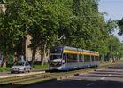 Ein kleiner Stadtbahneindruck aus dem grünen Leipzig