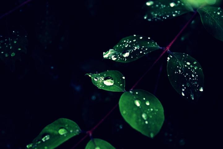 Ein kleiner Tropfen Wasser ist ein großer Tropfen des Lebens.
