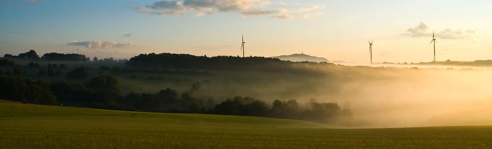 Ein kleines Stück Saarland