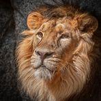 ein König!!