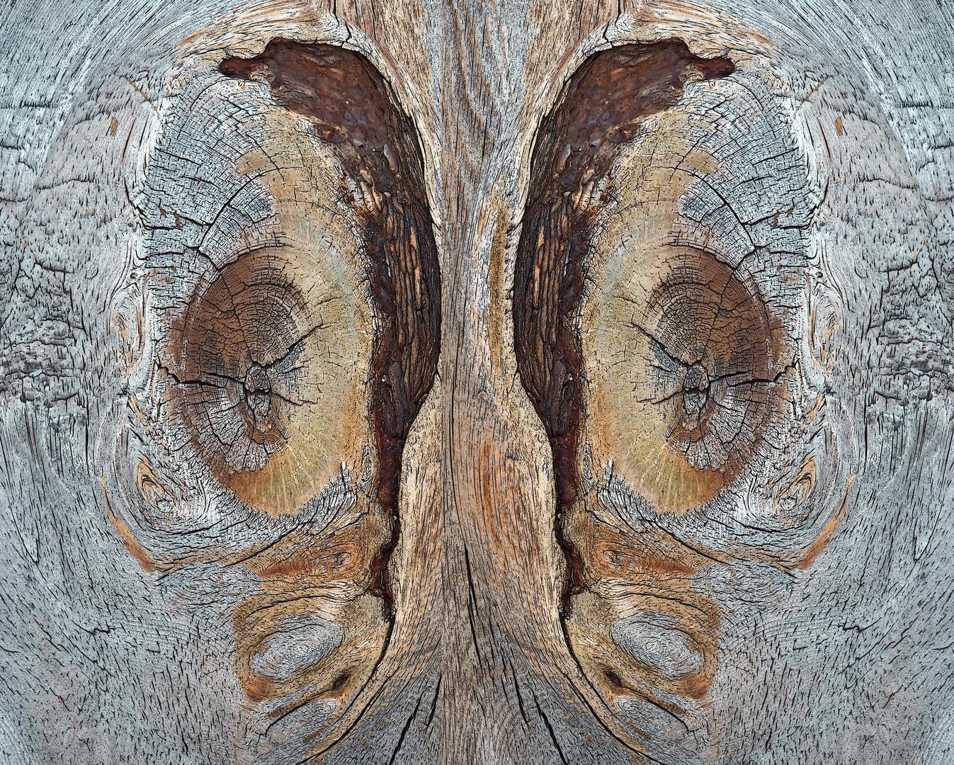 Ein Kunstwerk aus Holz: noch ein wenig anders gesehen... (2) - Une oeuvre d'art sur un banc en bois.