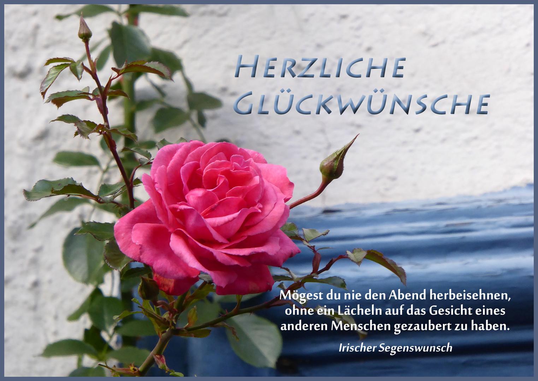 Geburtstagswünsche Rosen