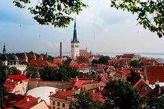 Ein letzter Blick auf Tallinn