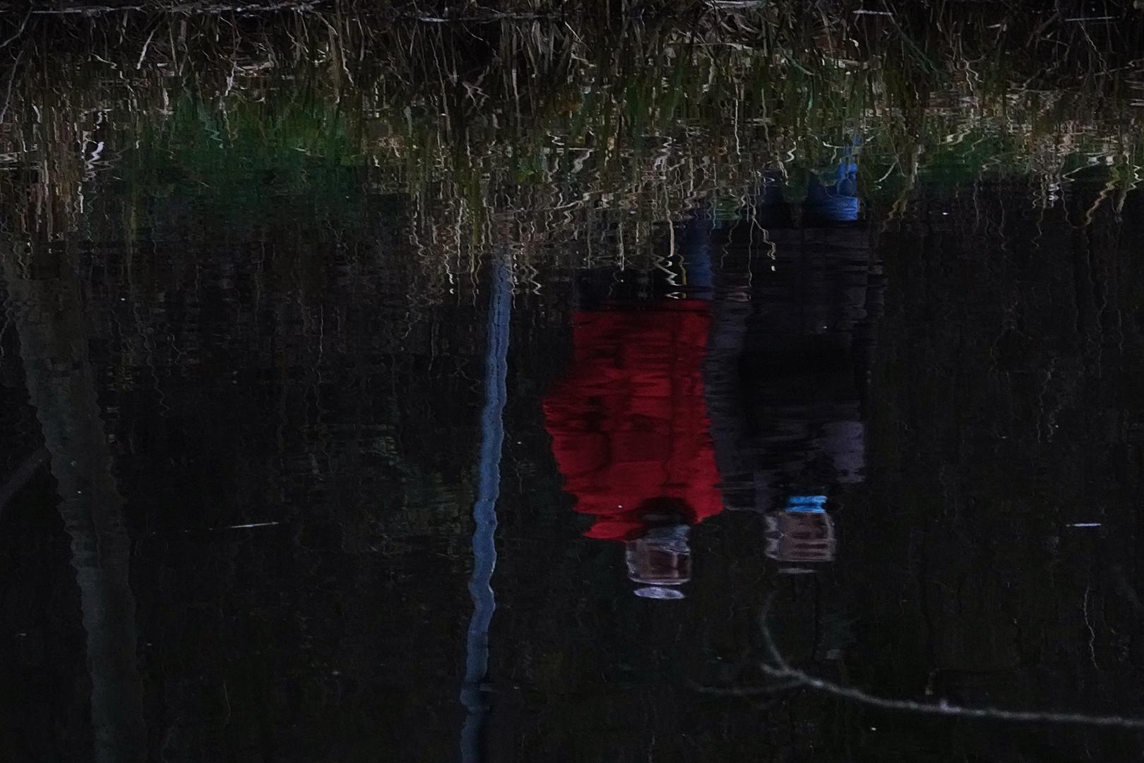 ein letzter Blick in den Teich