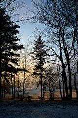 ein letztes Winterlicht....