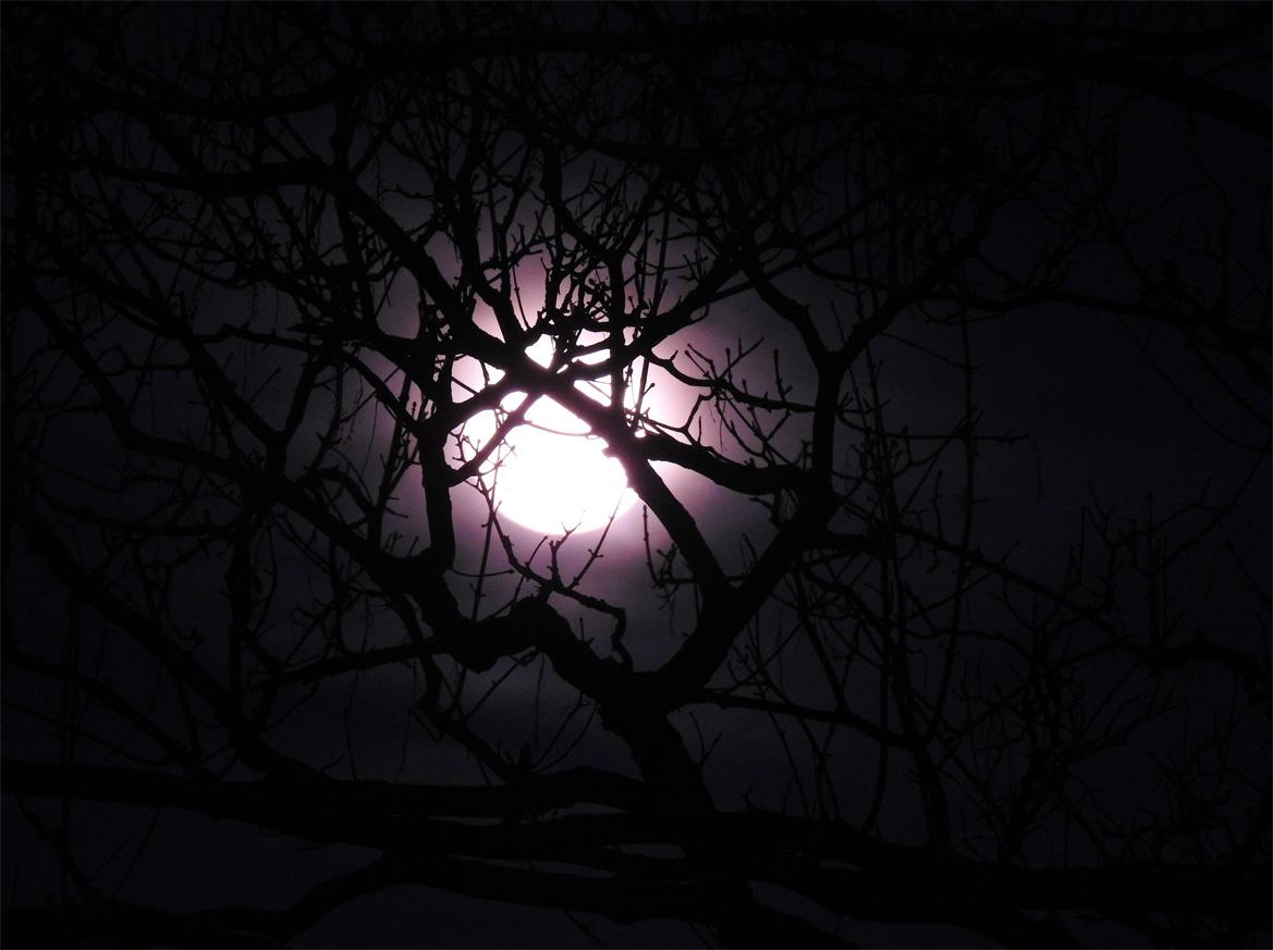 Ein Lichtblick in der Dunkelheit...