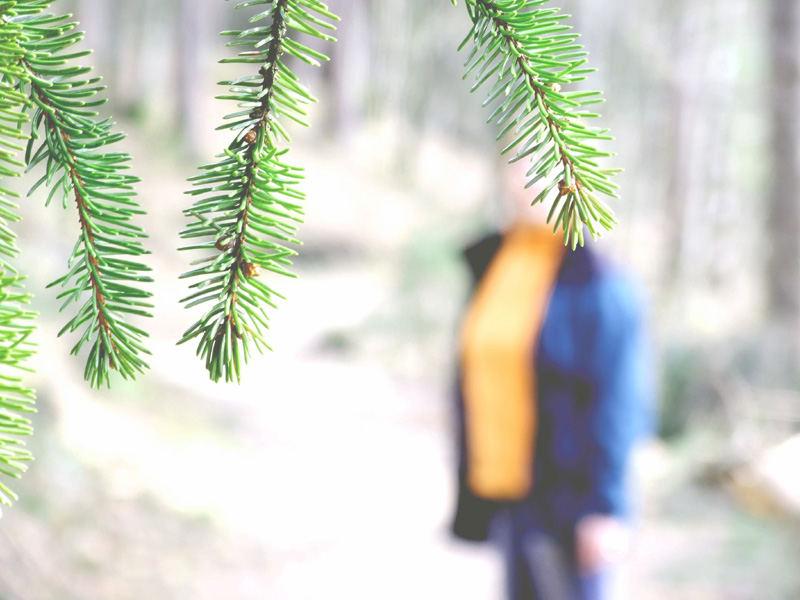 ein Männlein (Weiblein) steht im Walde