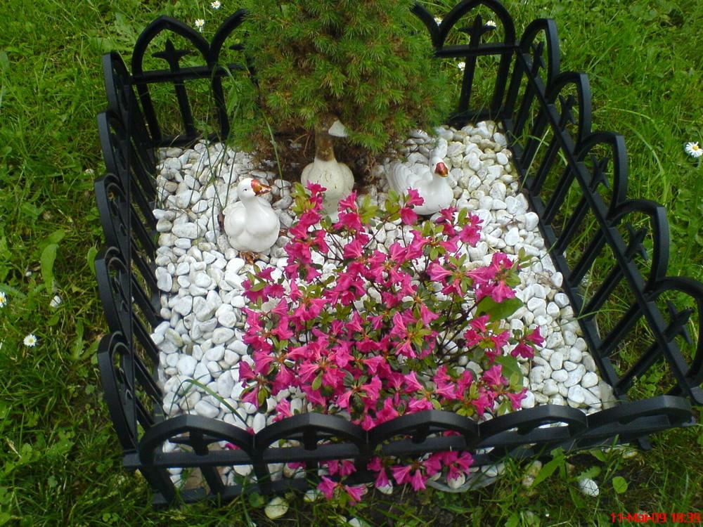 Ein Minigarten