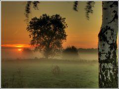 Ein Moment bei Sonnenaufgang