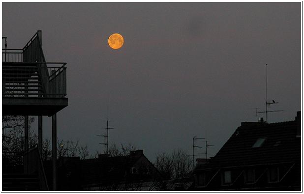 Ein Morgen, ein Mond, ein Vogel