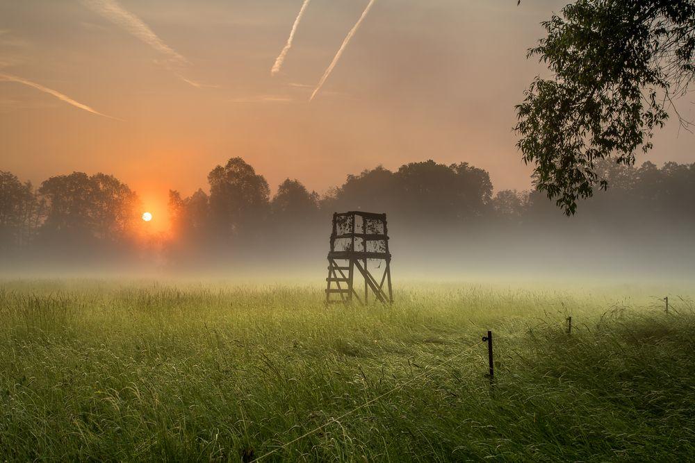 Ein Morgen im Spreewald