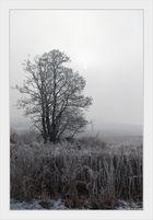 Ein Morgen im Winter