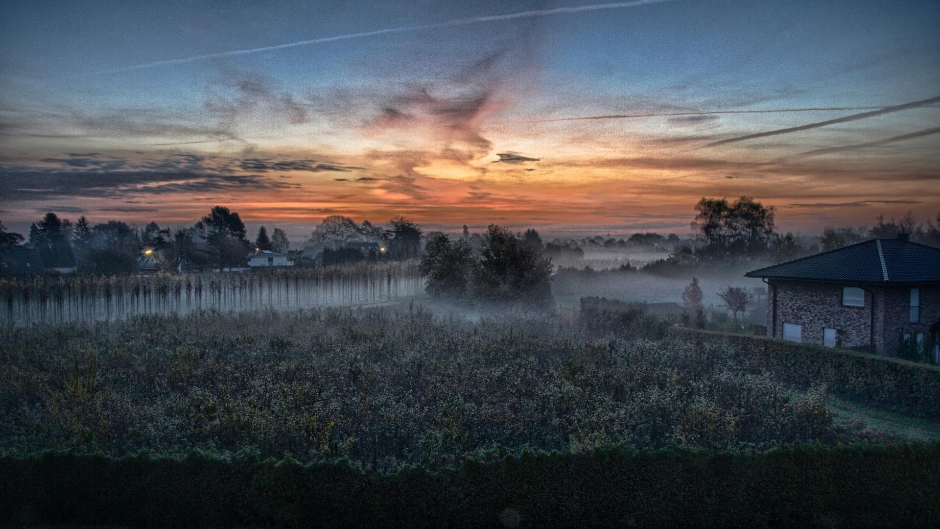 Ein Morgen in Halstenbek