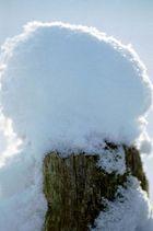 ein Mützchen voll Schnee