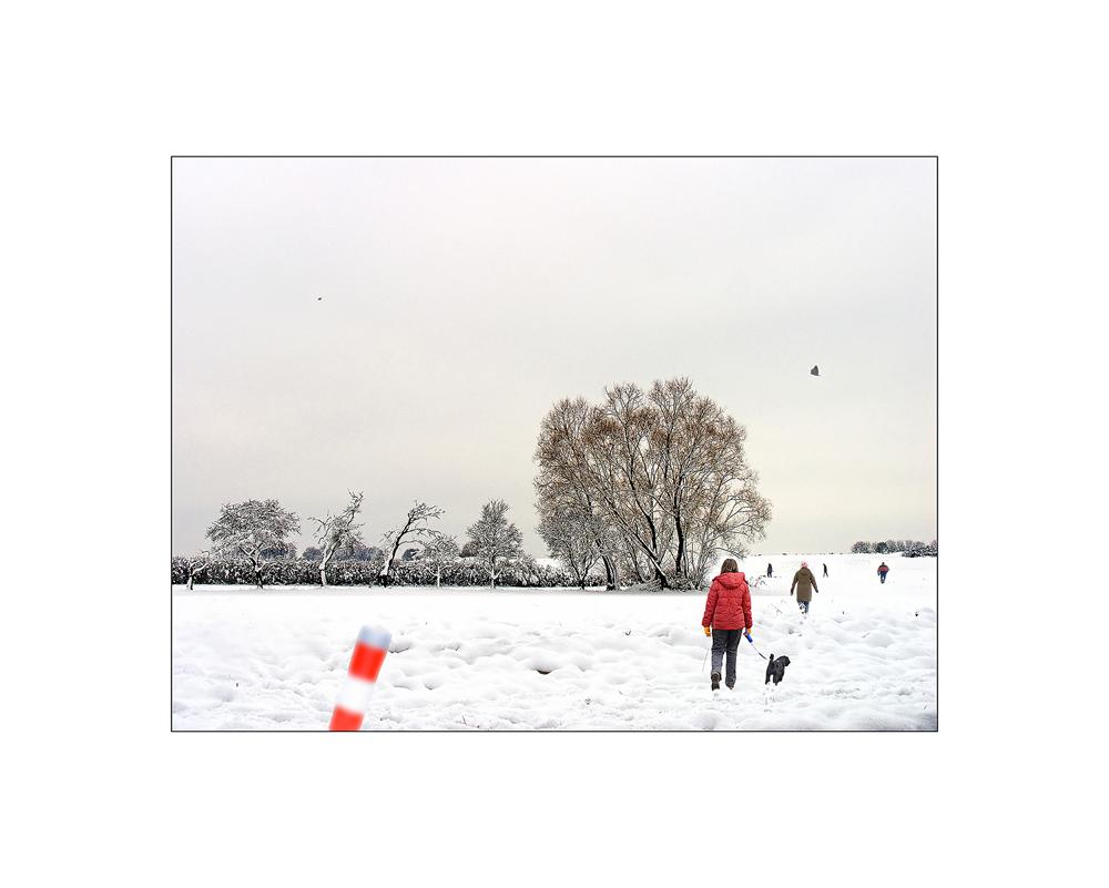 Ein Nachmittag im Schnee
