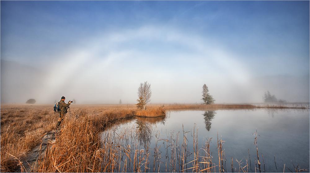 Ein Nebelbogen im Murnauer Moos