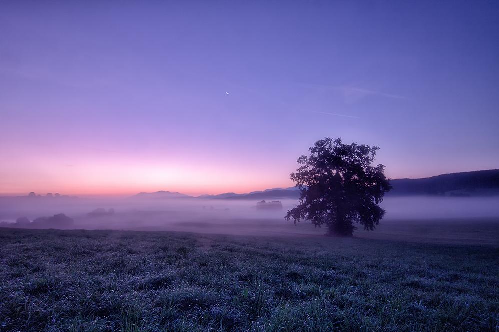 Ein neuer Morgen...