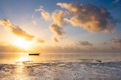 Ein neuer Morgen auf Sansibar 2