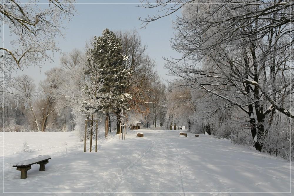 Ein normaler Winter