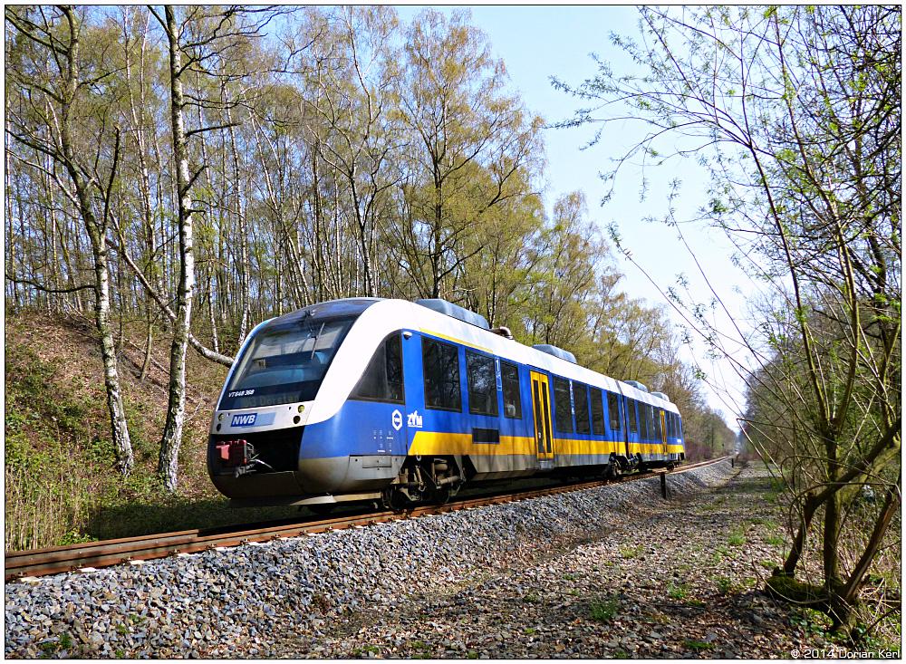 Ein NWB-Lint [VT648] fährt durch den Wald