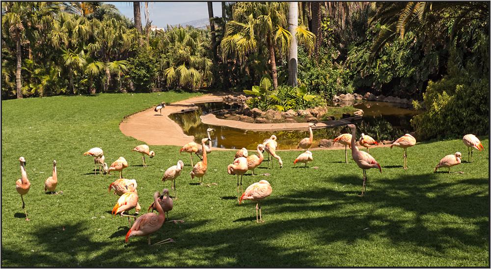Ein Paradies für Vögel