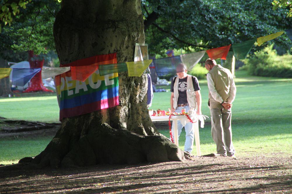 ein Parkbaum in Stuttgart - K21  9-09-2010 Ü2893K