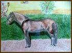 Ein Pferdebild