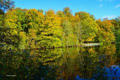 Ein regenfreier Tag im November - 2 -