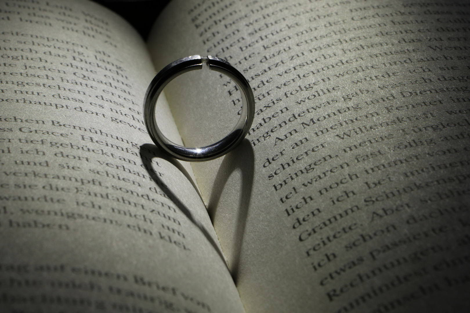 Ein Ring, ein Buch und eine Taschenlampe