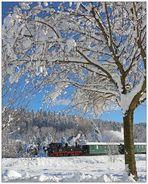 Ein schneebedeckter Baum