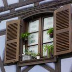 Ein schnuckeliges Fenster
