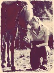 Ein schöner Morgen mit den Pferden