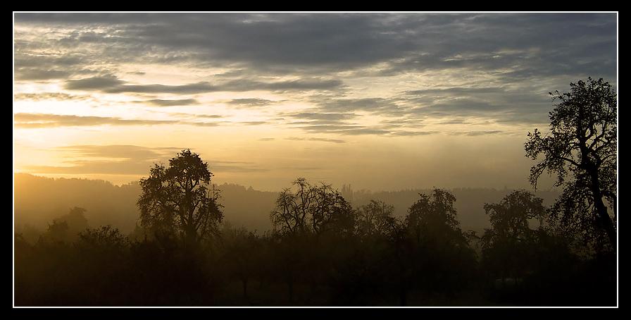 Ein schöner Nebliger Morgen im Rahmen *g*