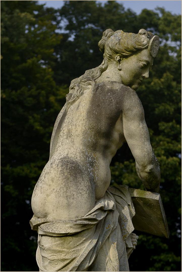Ein schöner Rücken....kann
