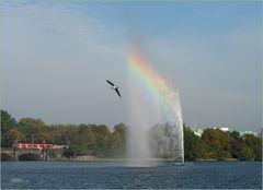 Ein schöner Tag mit Regenbogen an Binnenalster/Hamburg
