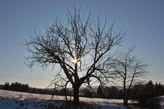Ein schöner Wintertag neigt sich dem Ende entgegen