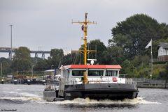 Ein Schwertwal im Nord-Ostsee-Kanal