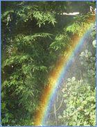 ein selbstgemachter Regenbogen....
