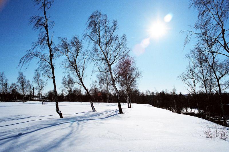 ein seltener Wintertag