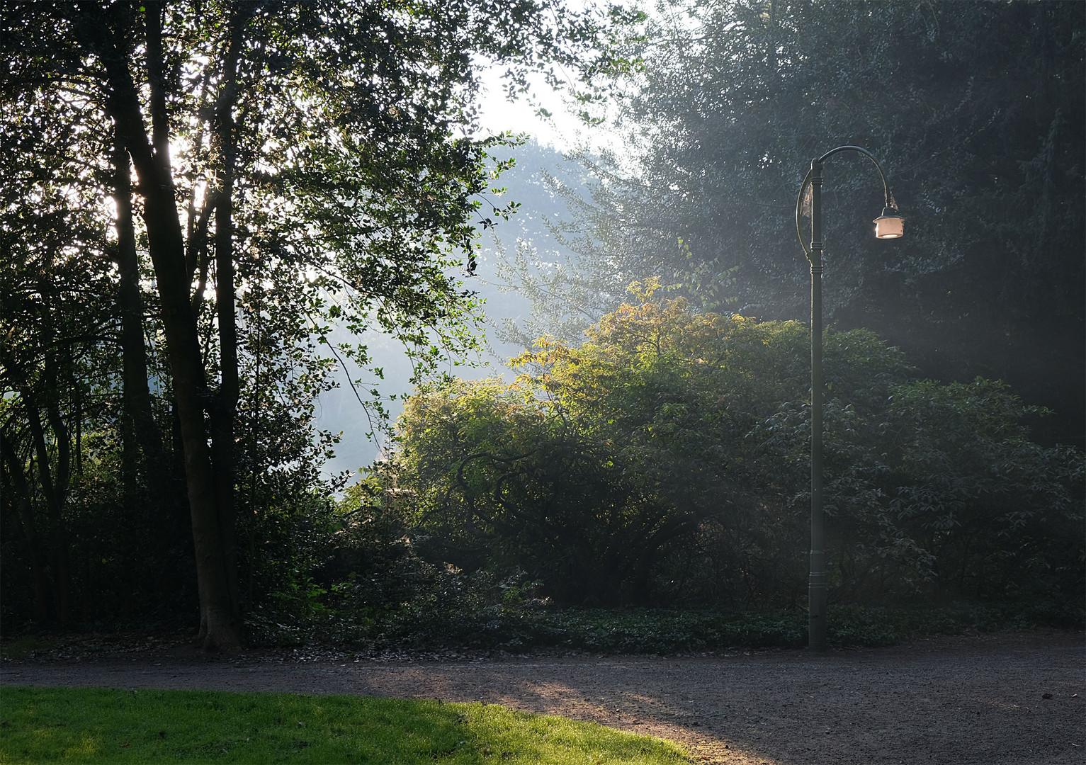 Ein Septembermorgen im Park