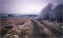 Ein simpler Feldweg