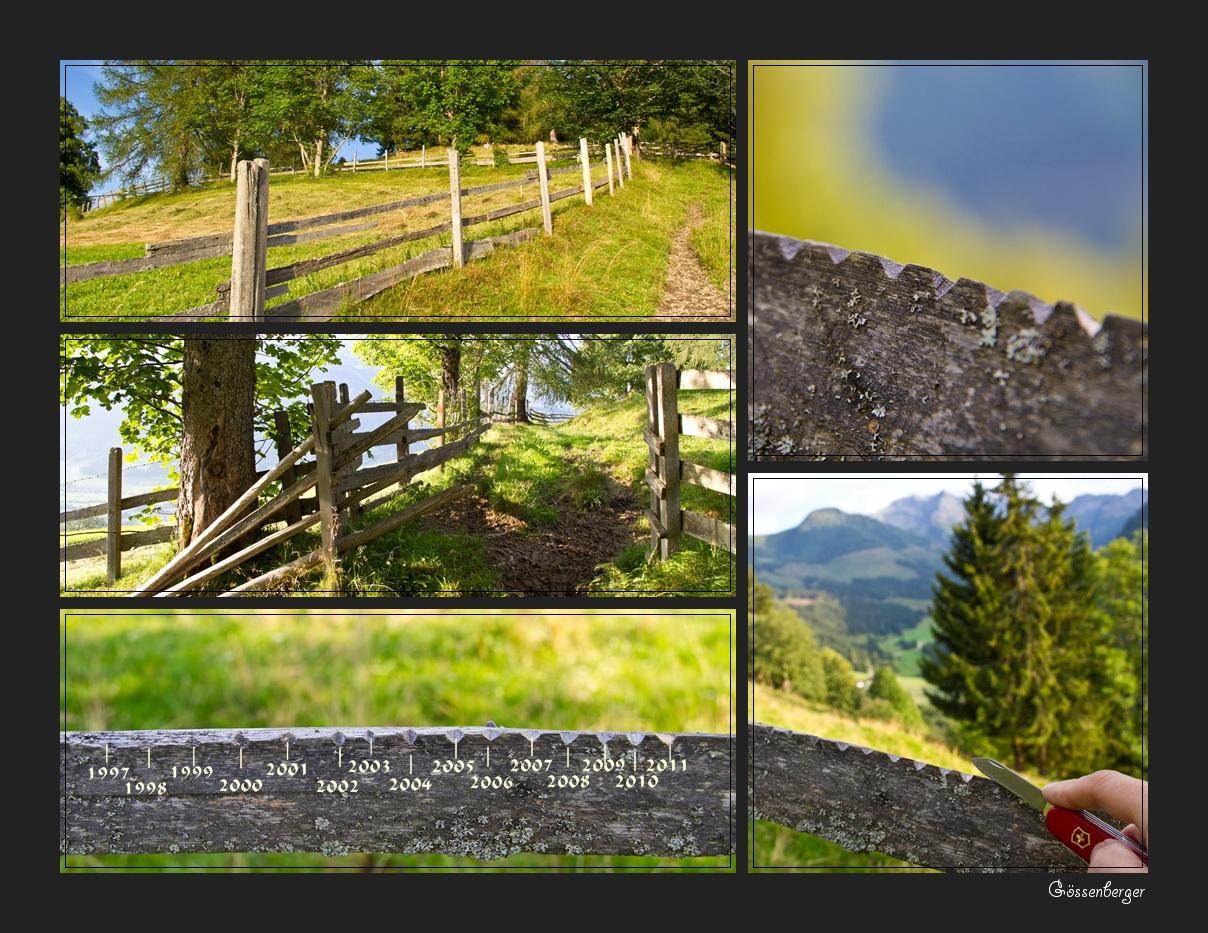Ein Sommer (Morgen) in den Bergen 20