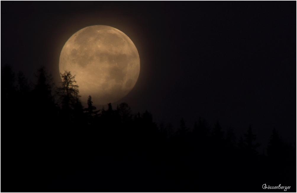 Ein Sommer (Vollmondnacht) in den Bergen 102