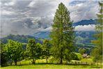 Ein Sommer ( Wolken ) in den Bergen 106