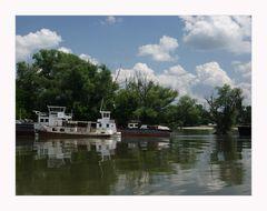 Ein Sommertag auf der Donau