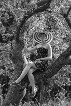 Ein Sommertagsbaum