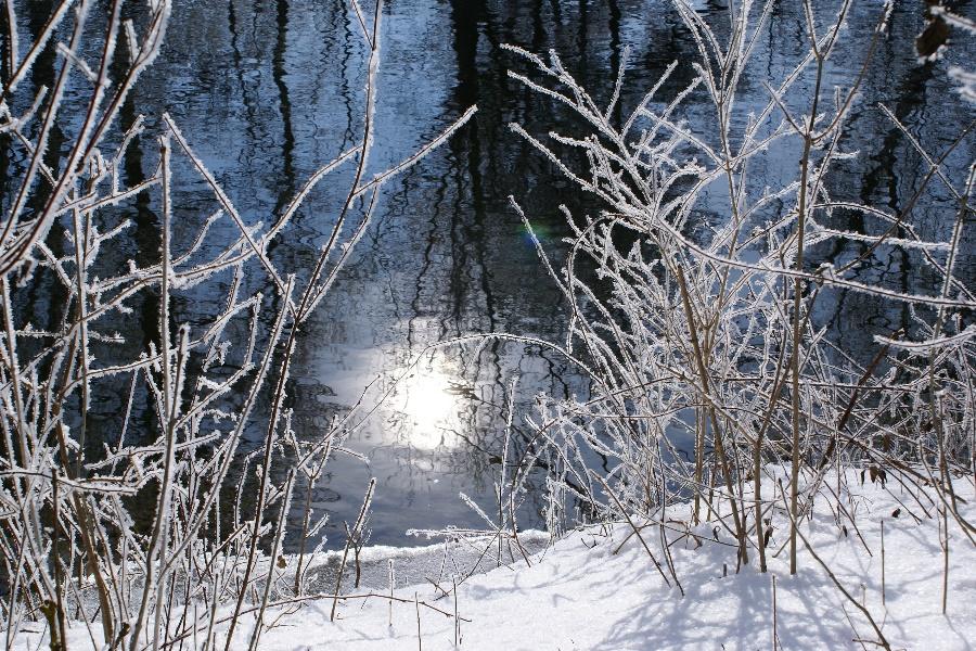 Ein sonniger Wintermorgen
