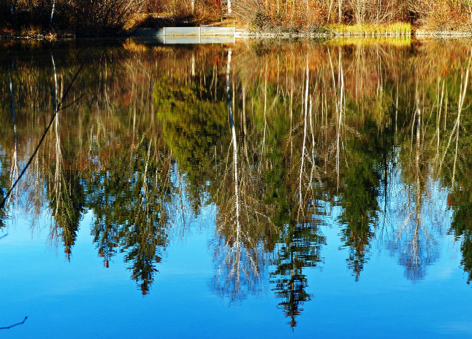 Ein Spiegel der Natur