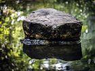 Ein Stein im Wasser