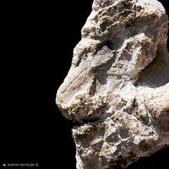 Ein Stein vom Auerkamp